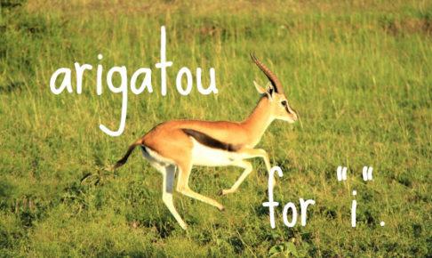 arigato鹿跳ねる