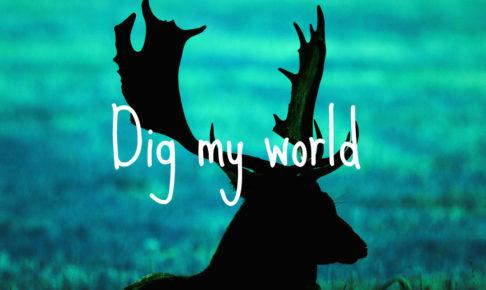 鹿の影画像